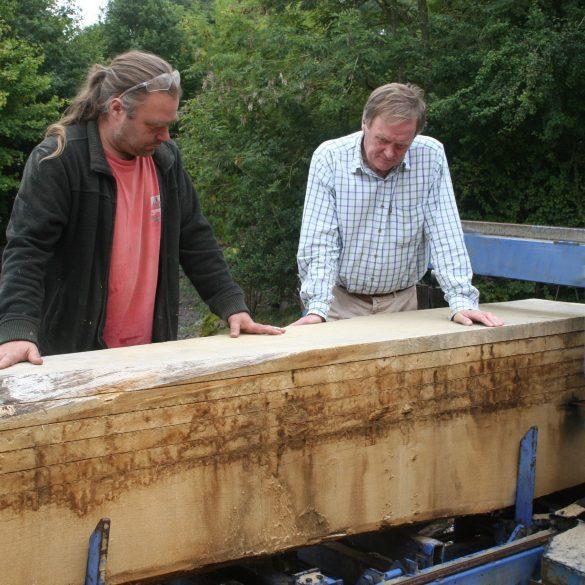 Timber-inspection_David_Chris