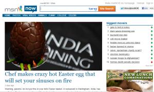 MSN easter egg
