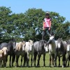 Palamedes PR: Extreme stunt rider Emma Massingale avoids saddle soreness by standing on the backs of her moving steeds – the most challenging and dangerous feat in the history of horsemanship.