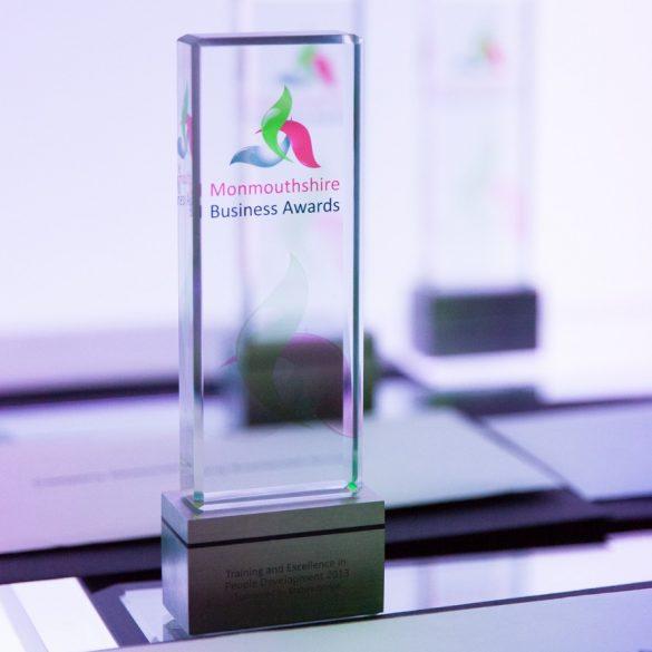 ©-Hall-Photographic-Mon-Business-Awards-2013-2908-892x1029